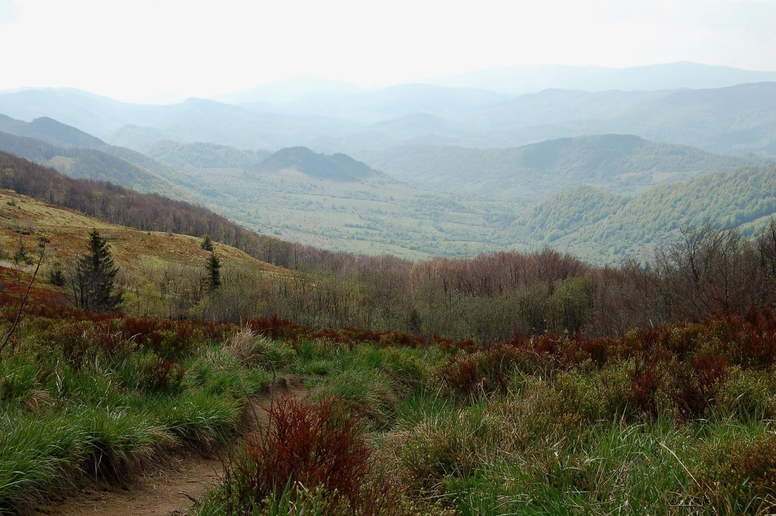 Wołosate - Tarnica, szlak czerwony