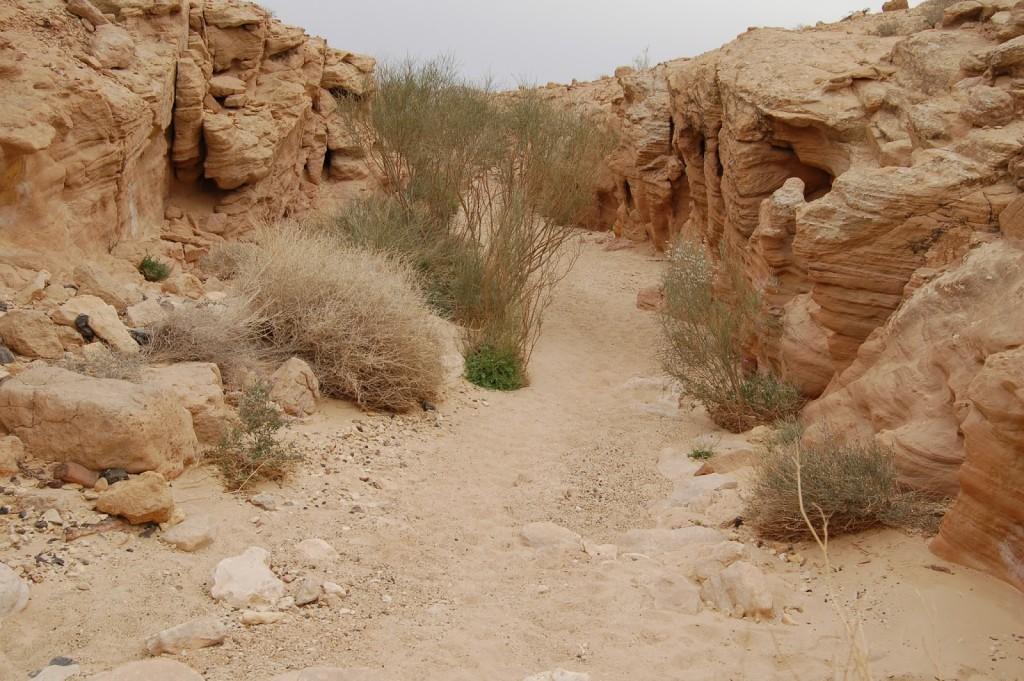Izraelski Szlak Narodowy, Nahal Ramon, Mitzpe Ramon