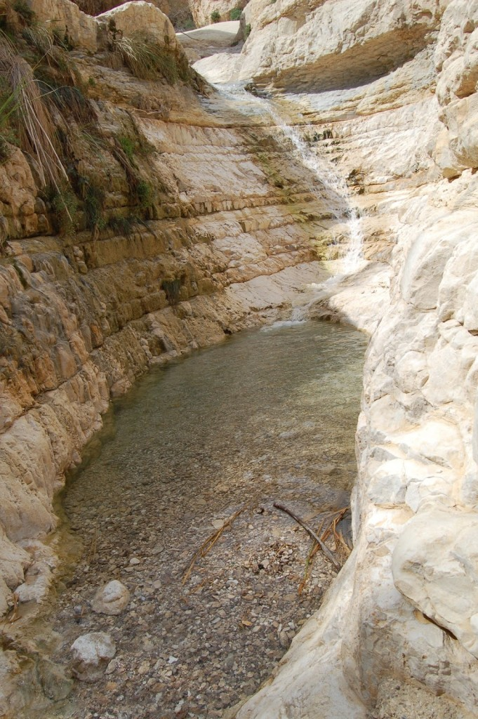 Ein Gedi, Izrael, Morze Martwe