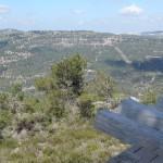 Artur Rubinstein i jednoosobowy cmentarz w Jerozolimie