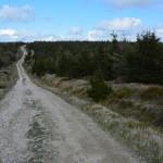 Główny Szlak Sudecki pierwszy dzień w Górach Izerskich