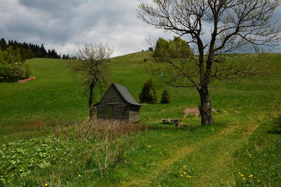 Góry Sowie i muflony – atrakcje GSS