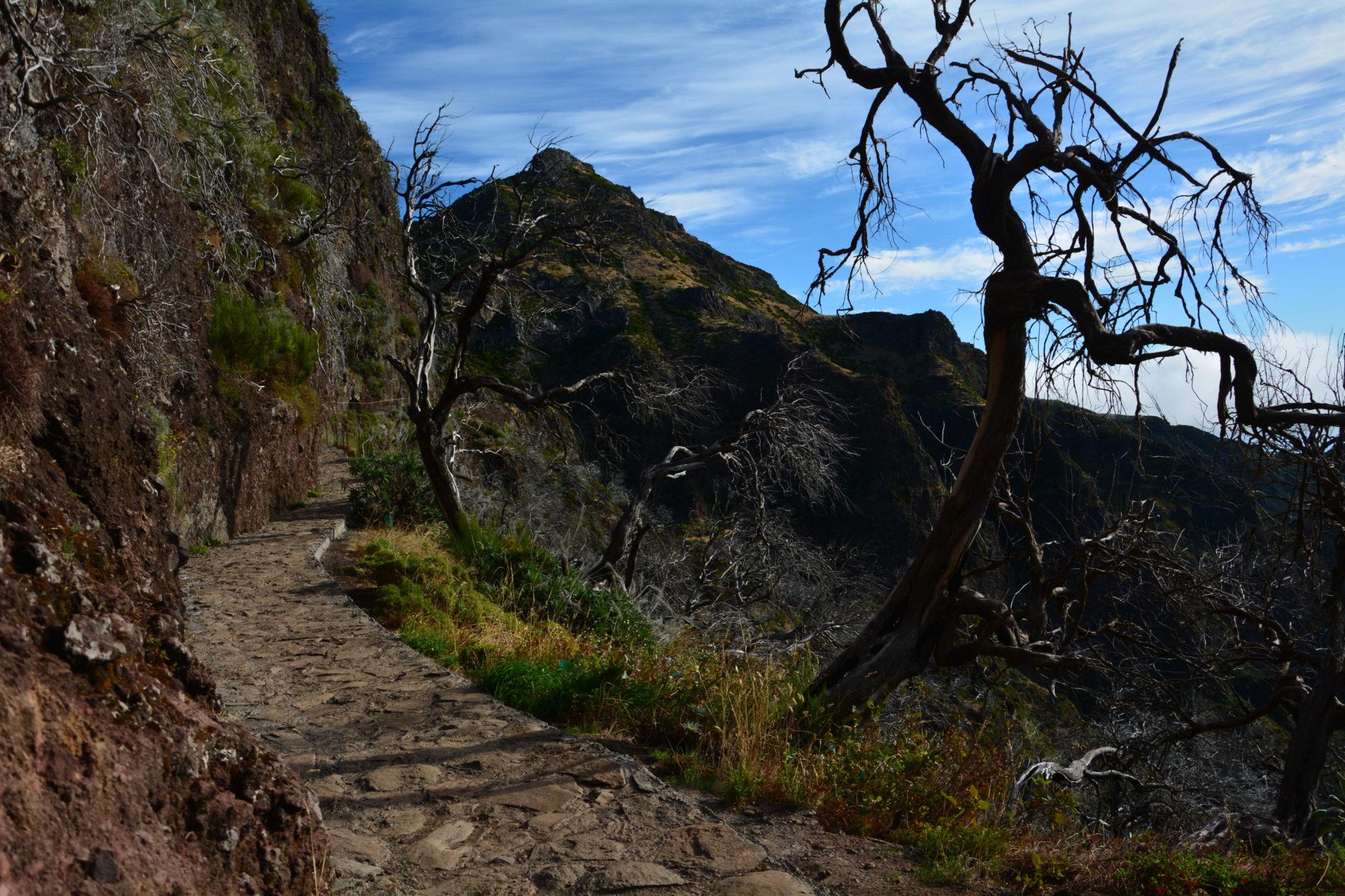 Madera – co zwiedzić ? Subiektywny przewodnik