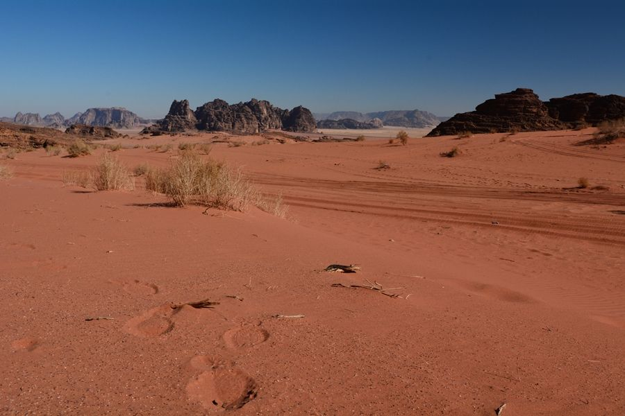 Wadi Rum w Jordanii informacje praktyczne ceny noclegi porady