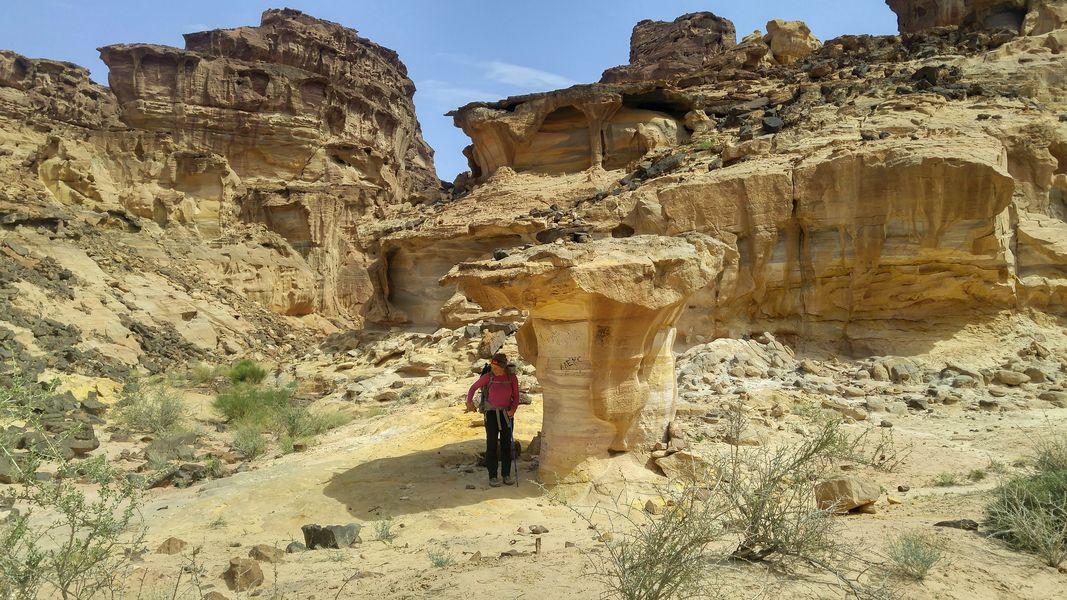Wadi Al Saif