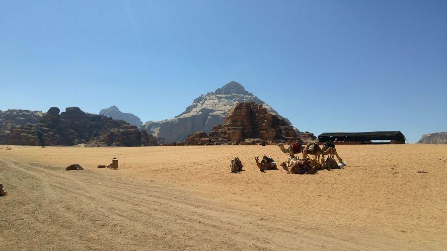 Wadi Rum w Jordanii, Beduini, noclegi