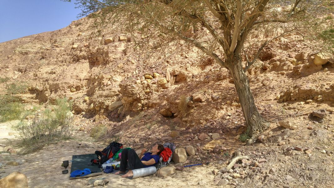 jordański chillout, szlak, pustynia