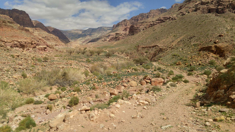 Rezerwat Biosfery Dana, Jordania