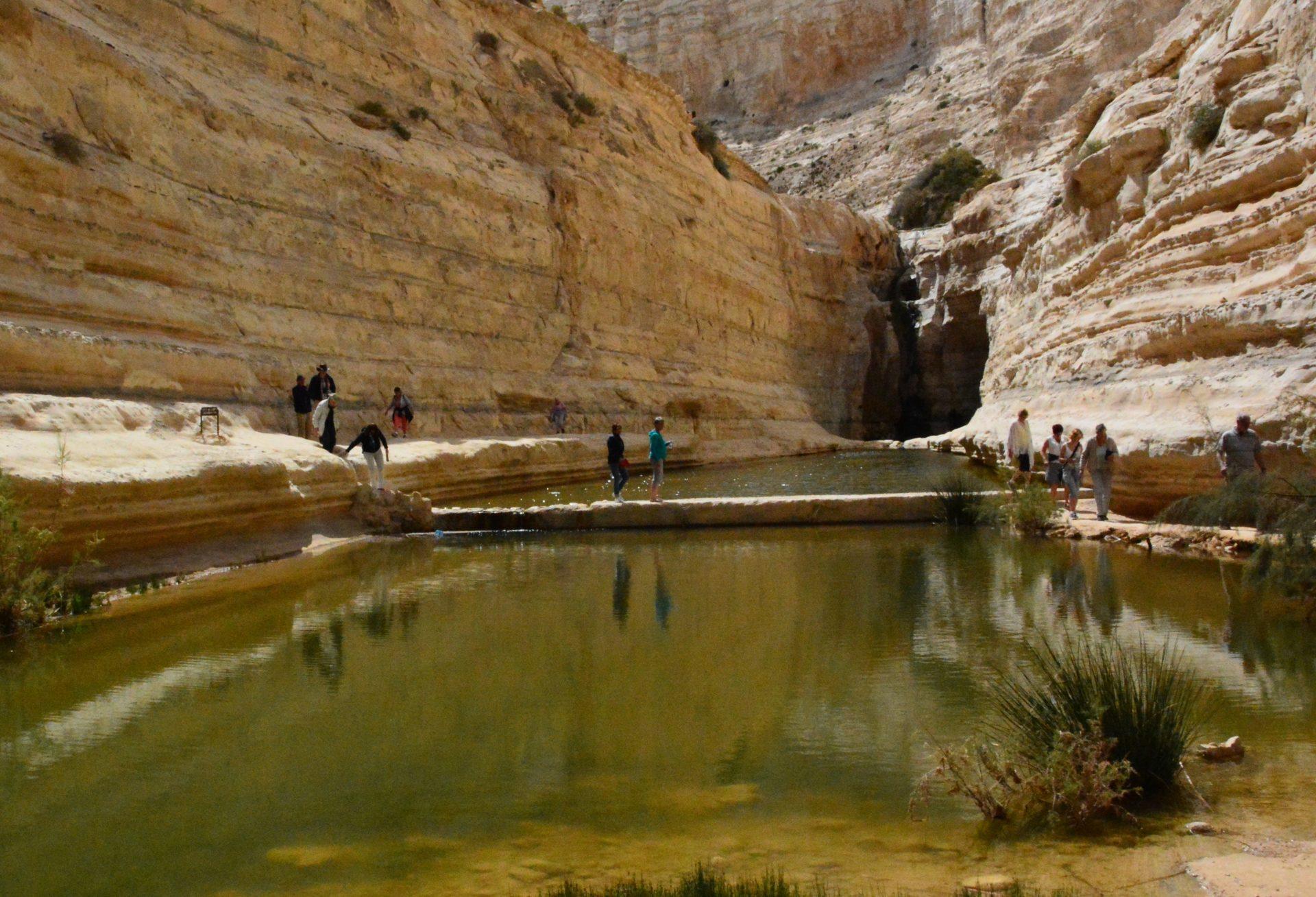 Ein Akev, źródła, pustynia Negew, Izrael trekking