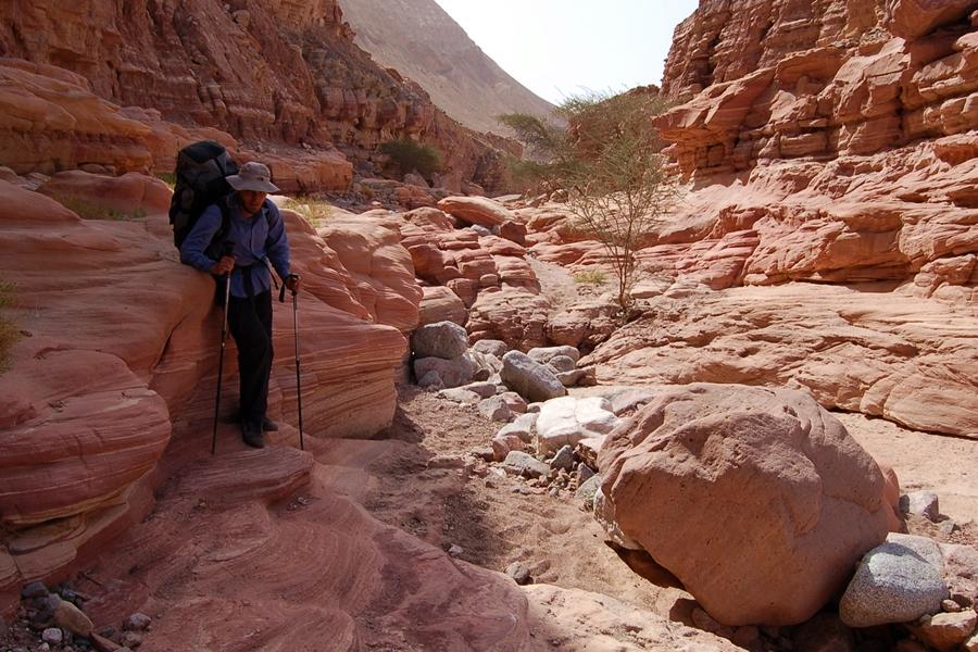 Izraelski Szlak Narodowy, pustynia Negew, Ejlat szlaki