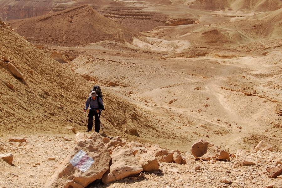 trekking w Izraelu, szlaki na pustyni Negew