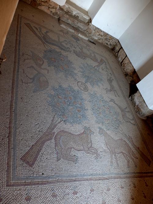Madaba, mozaiki
