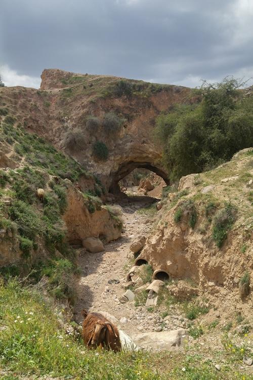 łuk skalny Jordania