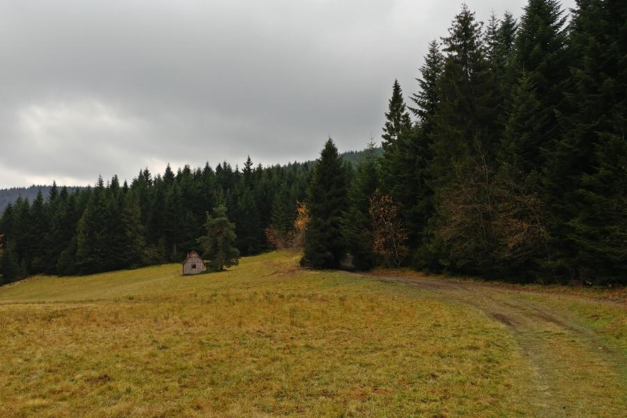 polany pod Mogielicą