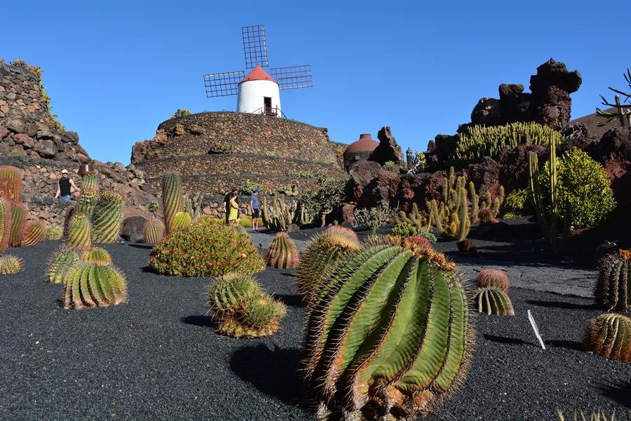 Jardin de Cactus, Lanzarote, Cesar Manrique