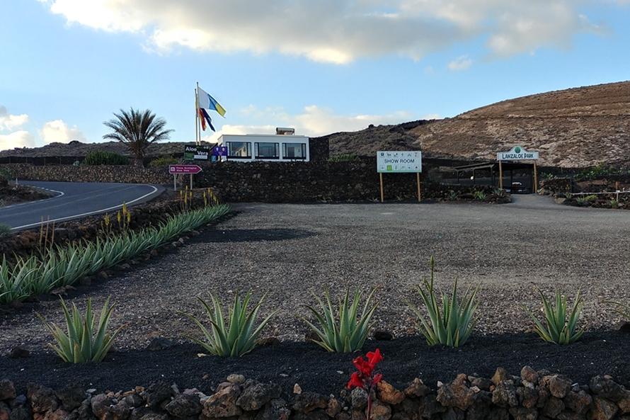 Muzeum Aloesu, Lanzarote