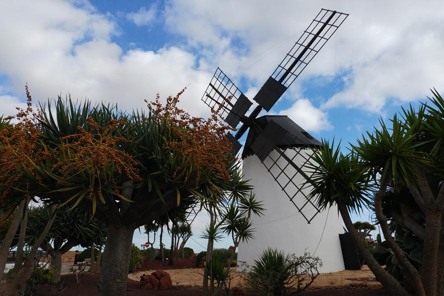 Muzeum sera Majorero, Antiqua, Fuerteventura, wiatrak