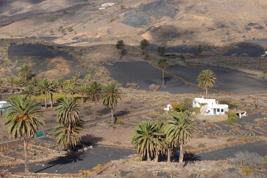 Haria, Lanzarote, Dolina Tysiąca Palm