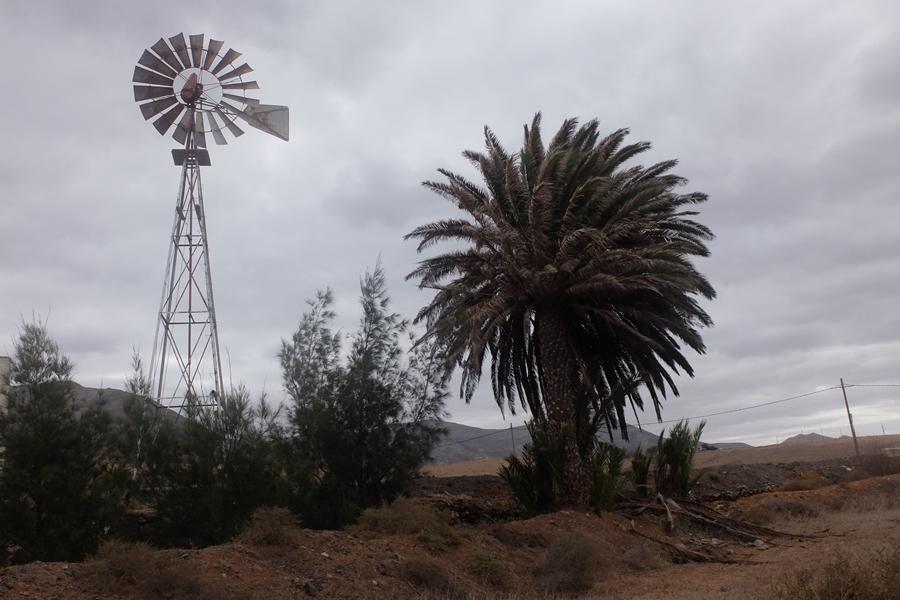 Fuerteventura atrakcje wiatraki