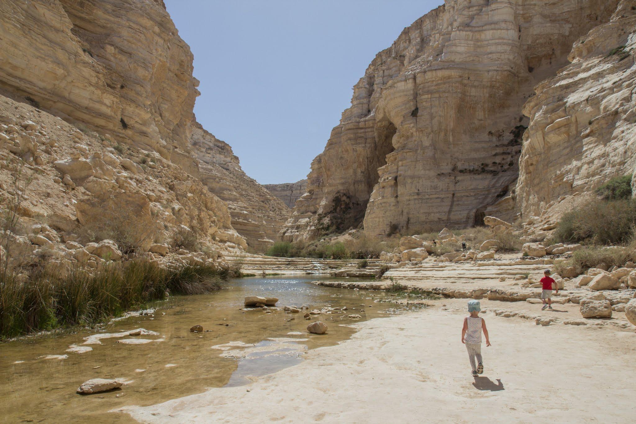 Ein Avdat, spacer do źródeł, Izrael