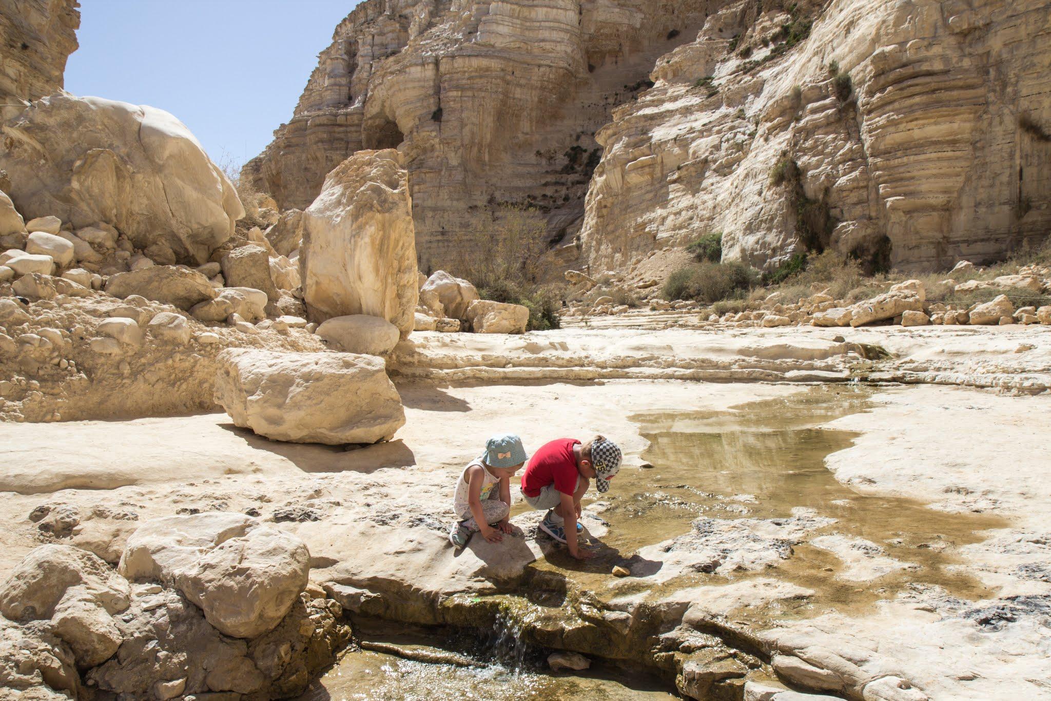 wędrówki z dziećmi po Izraelu, do źródeł Avdat