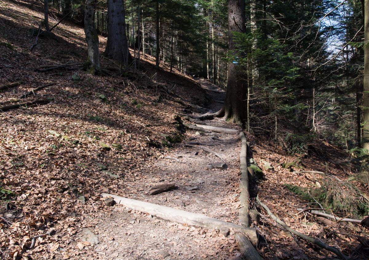 szlak niebieski na Turbacz, Gorce