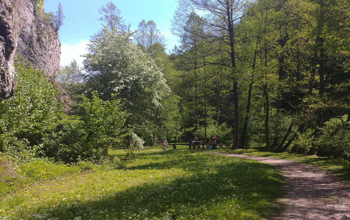 Dolina Mnikowska, okolice Krakowa