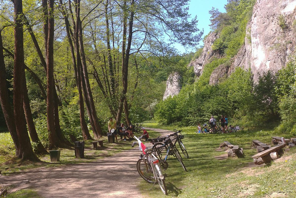 Dolina Mnikowska, Jura Krakowsko - Częstochowska