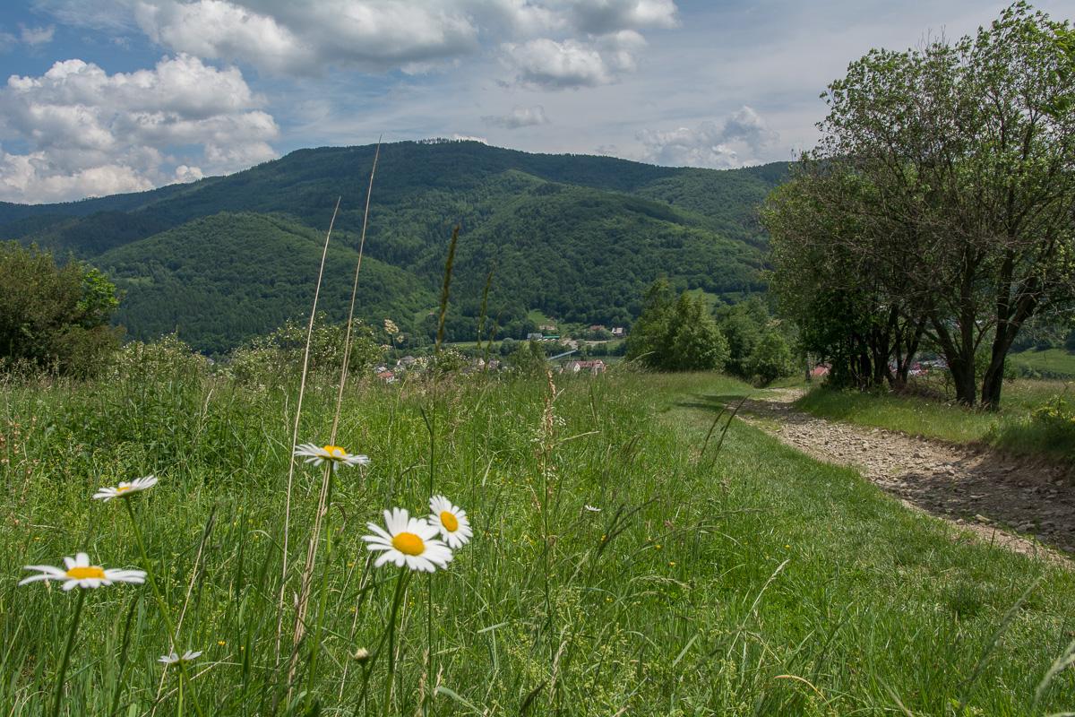 szlak na Czupel z Czernichowa