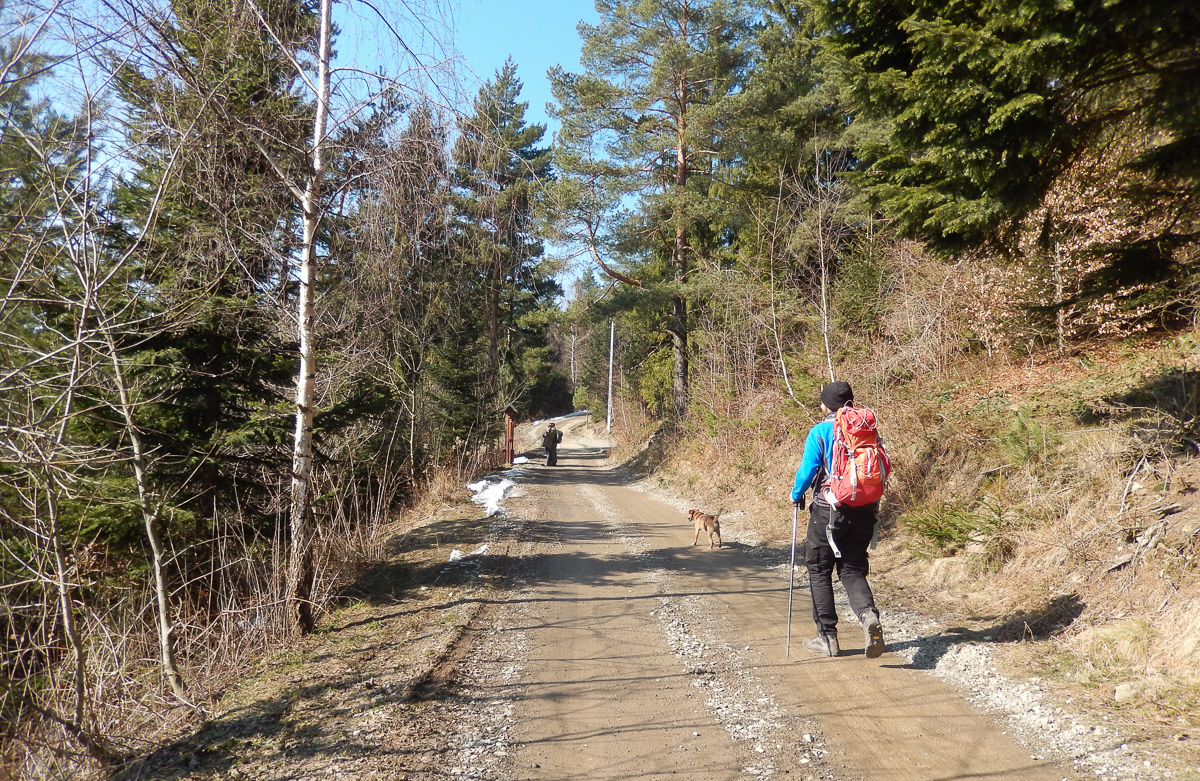Lubomir, najkrótszy szlak, przełęcz Jaworzyce