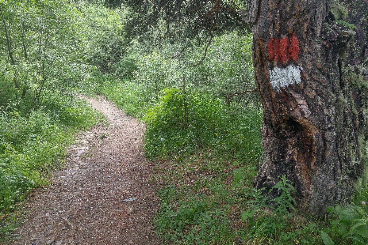 Kaukaz, Gruzja, znakowanie szlaków, Mestia - Uszguli