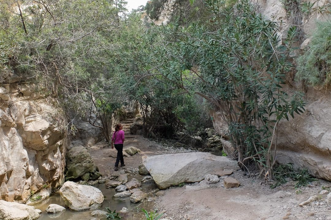 szlak Avakas George, Cypr